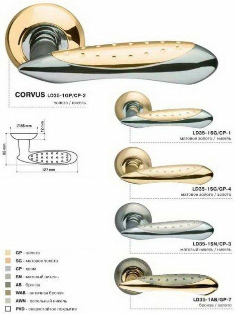 02_A4_Corvus